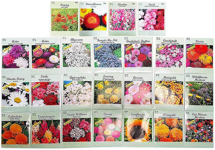 Cheap Flower Seed Packets