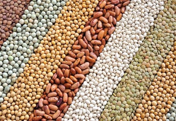 multiple varieties of beans