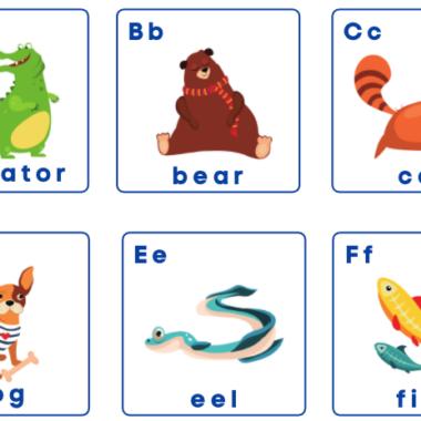 Animal Alphabet Flash Cards