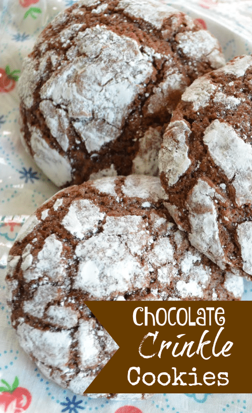These Chocolate Crinkle Cookies end up looking so pretty even though they are very simple to make. They pack a nice chocolatey flavor without having to mess around with melting chocolate - you just use cocoa powder! Another plus is that cocoa powder is much more inexpensive than using chocolate chips or baking chocolate. #Cookies #ChocolateCookies #ChristmasCookies #Baking