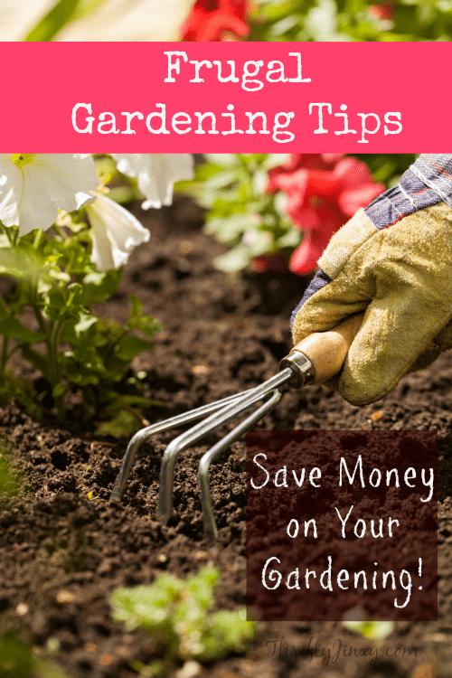 Frugal gardening tips save money gardening thrifty jinxy - Money saving tips in gardening ...