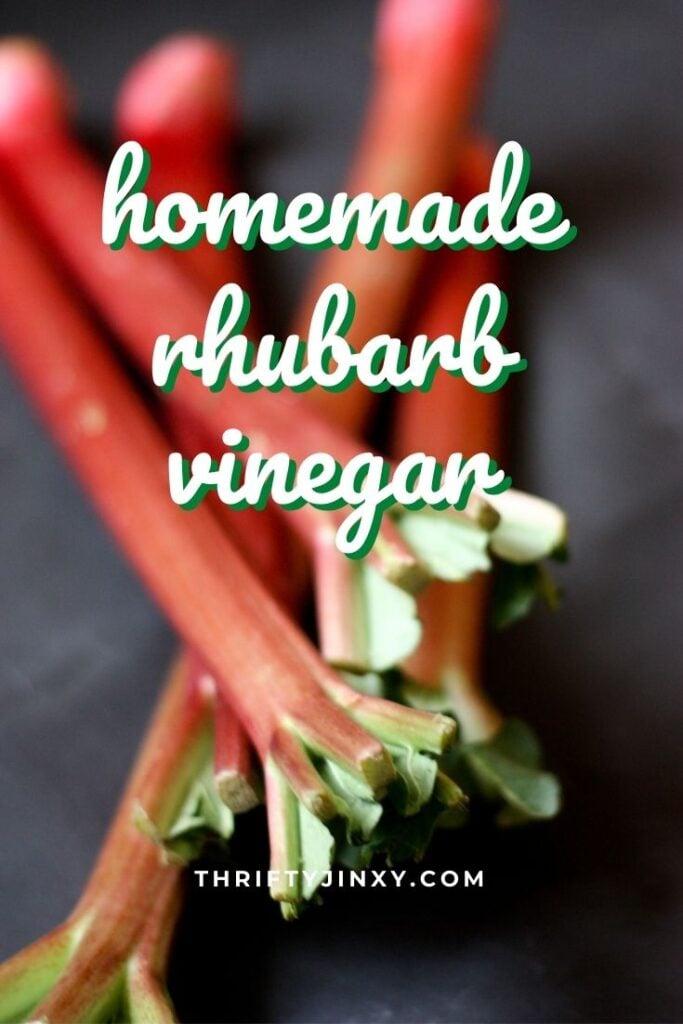 homemade rhubarb vinegar