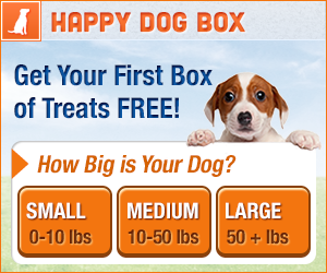 *HOT* Box FULL of Dog Toys and Treats only $4.99 SHIPPED! ($42 Value!)