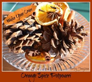 Homemade Orange Spice Potpourri – A Great Gift Idea