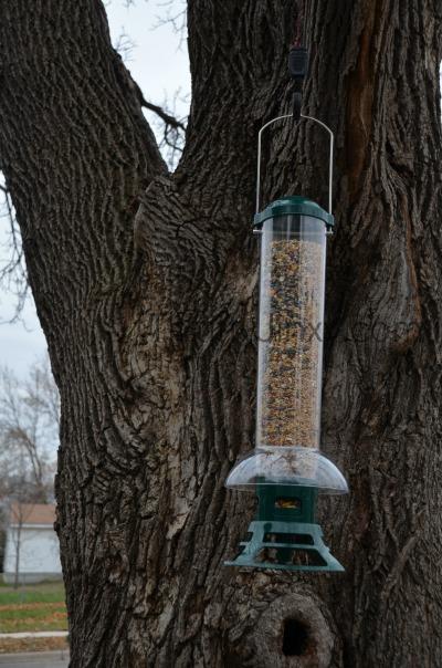 Perky-Pet Squirrel Slammer Wild Bird Feeder