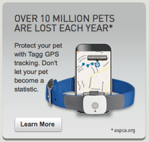 Perfect Holiday Gift for Dogs and their People: Tagg GPS Pet Tracker