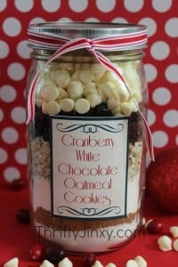 Cranberry White Chocolate Oatmeal Cookie in a Jar Recipe with FREE Printable Labels