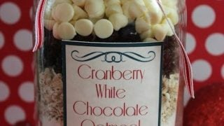 Cranberry White Chocolate Oatmeal Cookie in a Jar