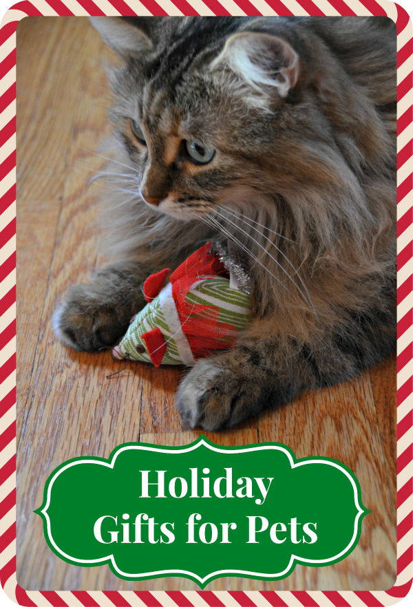 Holiday Gifts and Garb for Pets from PetSmart + Reader Giveaway!