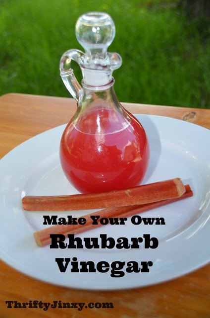 Homemade Rhubarb Vinegar Recipe – Use Up that Extra Rhubarb!
