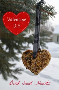 Valentine Bird Feeder Hearts DIY Craft