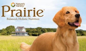 FREE Sample of Prairie Dog Food