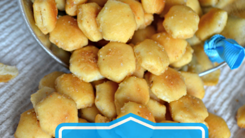 Crockpot Seasoned Oyster Crackers Recipe
