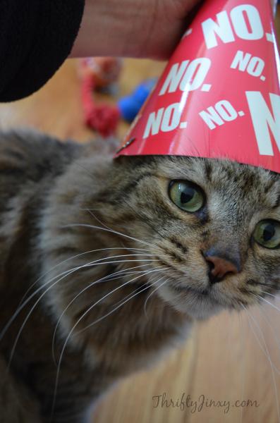 Peanut Party Hat