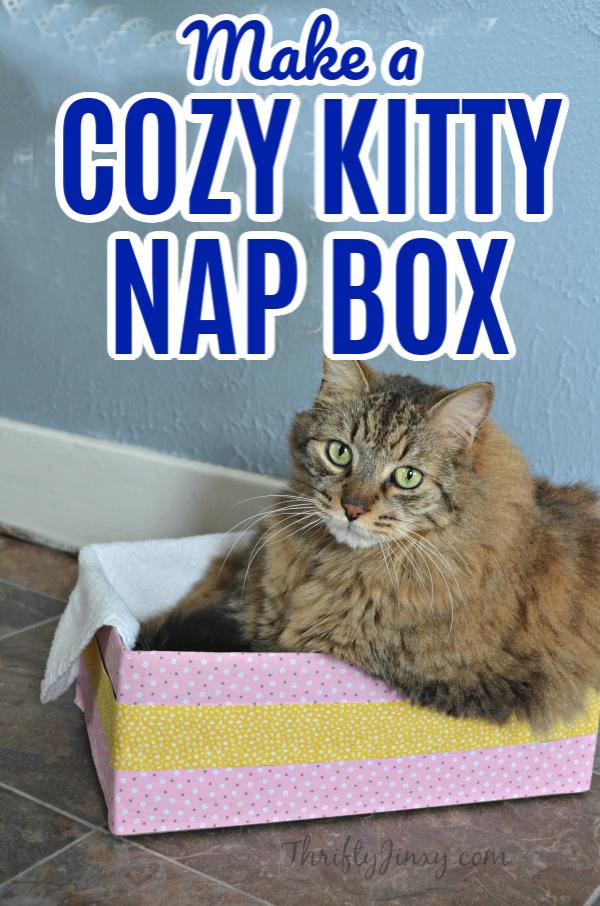 cozy kitty nap box