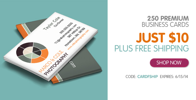 250 premium two sided business cards only 10 shipped thrifty jinxy inkgarden business cards reheart Image collections