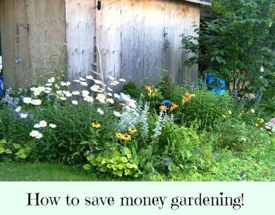 Frugal Gardening Tips – Save Money Gardening!