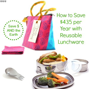 How to Save Up to $435 Per Year Using Reusable Lunchware