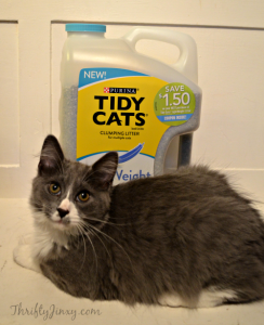 Celebrate #KittyOccasions with Tidy Cats