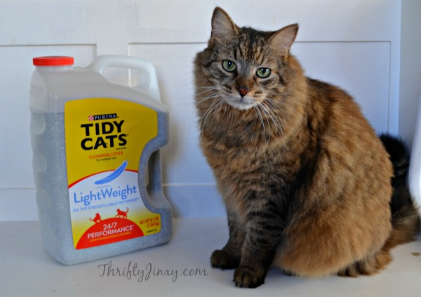 Less Lugging with Tidy Cats LightWeight Litter at Dollar General + Reader Giveaway