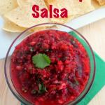 Cranberry Salsa