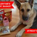 Dog Valentine's Day Treat Basket #TreatThePups
