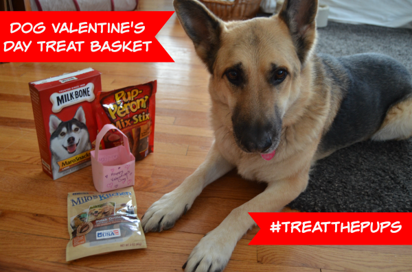Dog Valentine's Day Treat Basket #TreatThePups