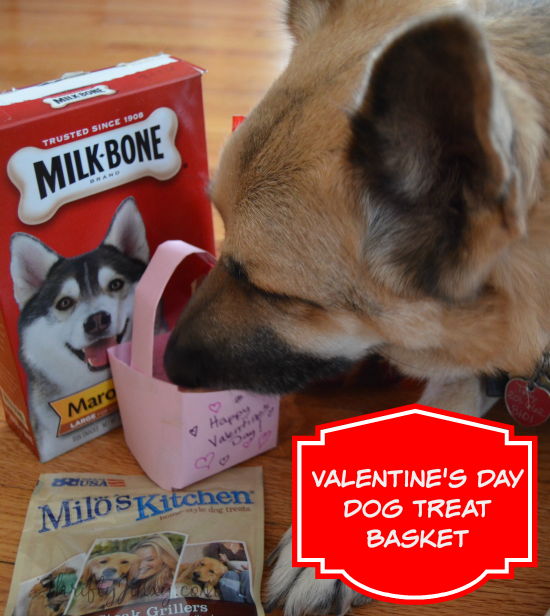 Easy DIY Valentine's Day Dog Treat Basket