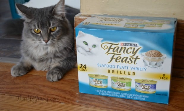 Cleo Fancy Feast