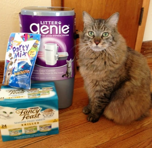 Fancy Feast Litter Genie Treats Toy