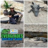 Everglades Holiday Park – Our Visit with the Gator Boys