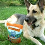 Toby Loves Natural Balance Limited Ingredients Treats #PetSmartStory