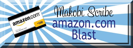 $100 Amazon Giveaway – December Twitter Blast