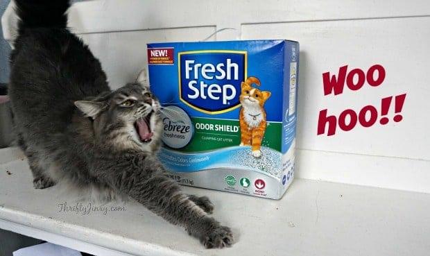 Fresh Step Febreze