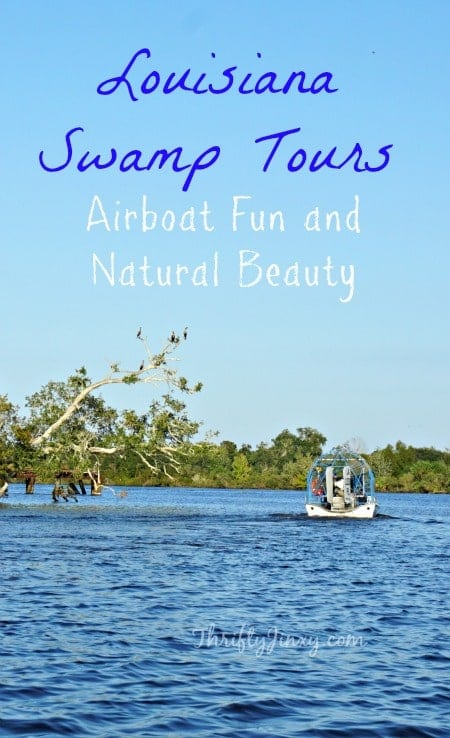 Louisiana Swamp Tours - Airboat Fun and Natural Beauty