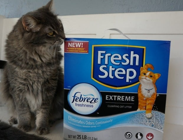Fresh Step Febreze Extreme