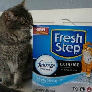 Join the #Unsmellable Fresh Step® with the Power of Febreze™ Twitter Party 3/29