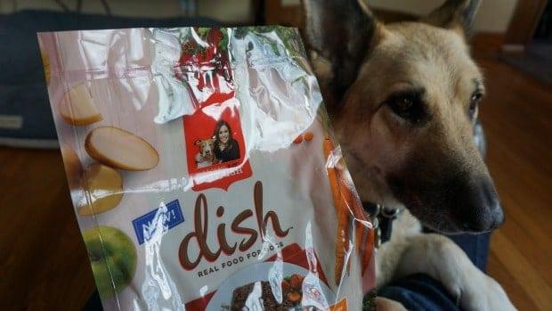 DISH from Rachael Ray™ Nutrish® Toby