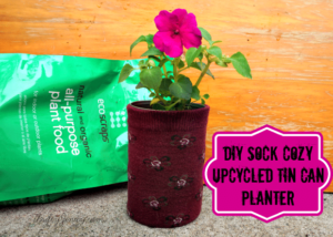 DIY Sock Cozy Upcycled Tin Can Planters + Greener Gardening Ideas