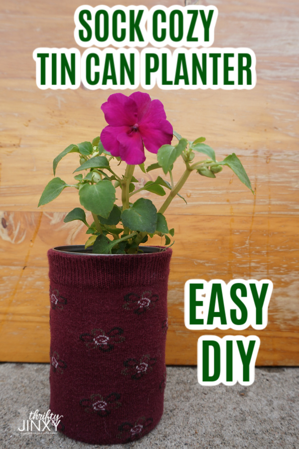 Tin Can Sock Planter