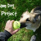 Beneful 2016 Dream Dog Park Project + Reader Giveaway
