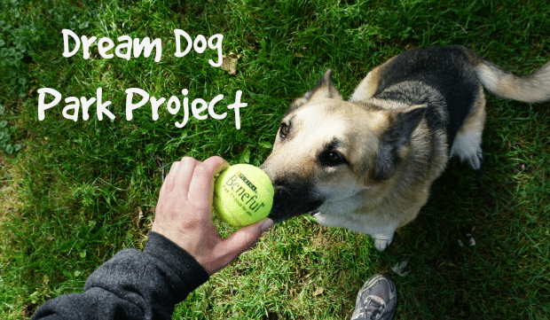 Dream Dog Park Project
