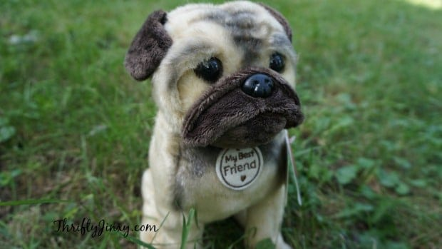 Best Friends Dog Adoption Fees