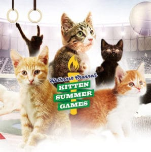 Kitten Summer Games – Get Your Cute On! + Reader Giveaway