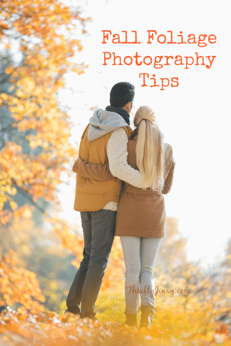 fall-foliage-photography-tips