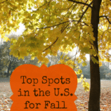 Top Spots in the U.S. for Fall Foliage