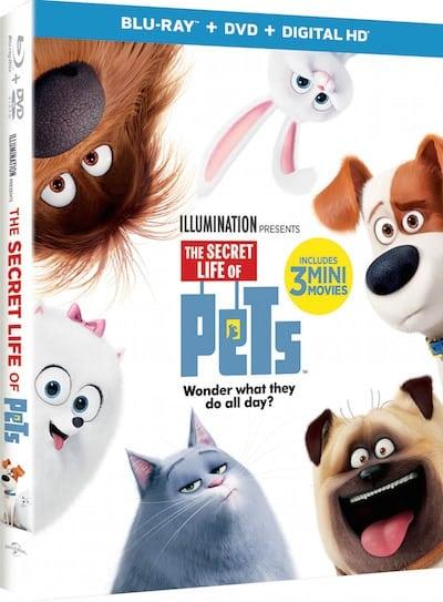 the-secret-life-of-pets-blu-ray-box-art