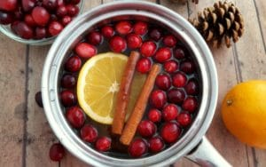 DIY Christmas Potpourri with Printable Gift Labels