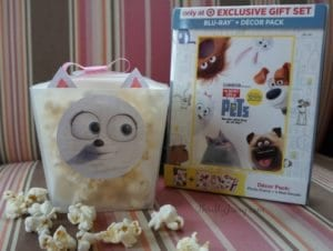 The Secret Life of Pets Movie Night with Gidget Popcorn Boxes DIY + Reader Giveaway