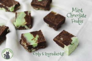 Easy 5 Ingredient Mint Chocolate Fudge Recipe